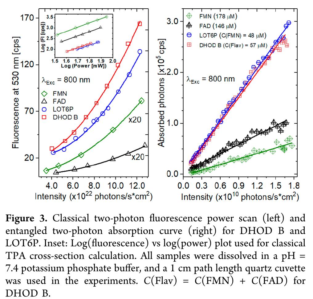 Piranha Led Super Flux Led Power Leds Package Diagram